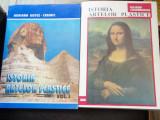 ISTORIA ARTELOR PLASTICE - ADRIANA BOTEZ CRAINIC   2 VOLUME