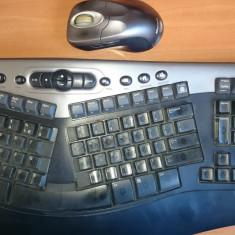 Kit Microsoft Wireless Optical Desktop Pro v2.0 tastatura si mouse