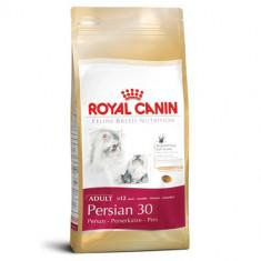 ROYAL CANIN PERSIAN 400 GR - Hrana pisici
