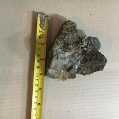 Floare de mina model 9 - Fosila roca