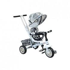 Tricicleta copii Baby Mix Cu Scaun Reversibil Ur-Etb32 2 White
