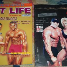 lot 6 reviste culturism Iron World, Fit Life
