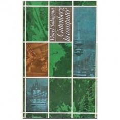 Viorel Salagean - Gutenberg la computer