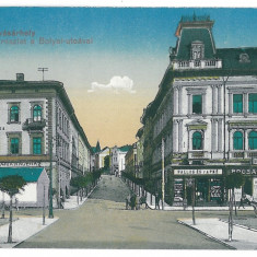 3632 - TARGU-MURES - old postcard - unused - Carte Postala Transilvania 1904-1918, Necirculata, Printata