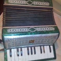 Acordeon pt copii - Instrumente muzicale copii Altele
