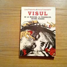 VISUL * De la Medicina, la Psihanaliza, Cultura, Filosofie - Liviu Popoviciu - Carte stiinta psihiatrie