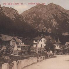 POIANA - TAPULUI VEDERE SPRE JEPI CIRCULATA 1911 - Carte Postala Muntenia 1904-1918, Printata