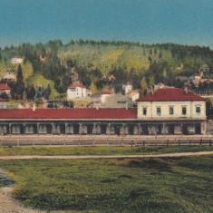 PREDEAL GARA - Carte Postala Transilvania dupa 1918, Necirculata, Printata