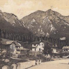 POIANA - TAPULUI VEDERE SPRE JEPI CIRCULATA 1912 - Carte Postala Muntenia 1904-1918, Printata
