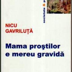 Mama prostilor e mereu gravida - Autor(i): Nicu Gavriluta - Roman