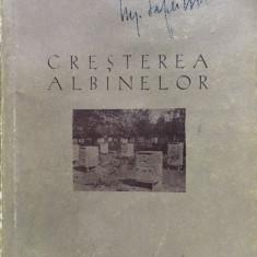 CRESTEREA ALBINELOR - Manual pentru cursurile agrozootehnice de 3 ani
