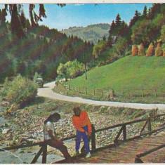 Bnk cp Muntii Apuseni - Valea Ariesului - necirculata, Printata