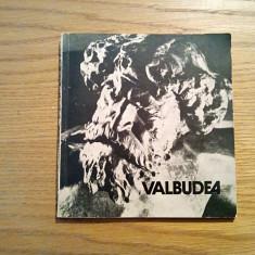 STEFAN IONESCU-VALBUDEA - text: Adriana Botez (autograf) - Meridiane, 1982