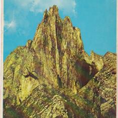 Bnk cp Campia Turzii - Turnul Ascutit - necirculata - Carte Postala Transilvania dupa 1918, Printata, Turda