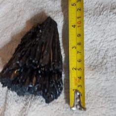Floare de mina model 15 - Fosila roca