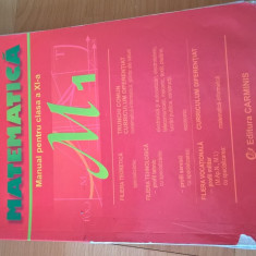 Manual Matematică, clasa a XI-a M1, Editura Carmis, Marius și Georgeta Burtea - Manual scolar Altele, Clasa 11