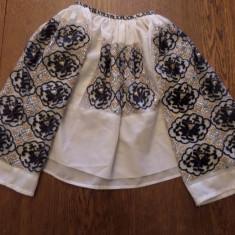 IE ZONA CARASULUI - Costum popular