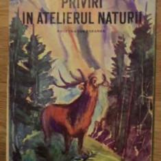 Priviri In Atelierul Naturii - Ionel Pop, 384924 - Carti Agronomie