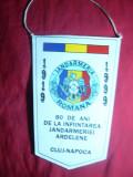 Fanion 80 Ani -Infiintarea Jandarmeriei Ardelene Cluj-Napoca 1919-1999