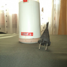 RÂŞNIŢĂ ELECTRICP CAFEA ELECTRO CASNICE - Robot Bucatarie Alta