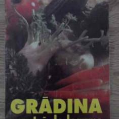 Gradina Noastra De Legume - M. Vladut, Serban Popa, 385085 - Carti Agronomie