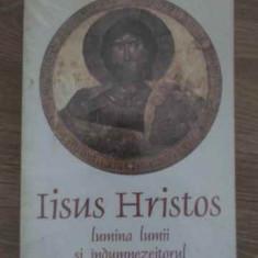 Iisus Hristos Lumina Lumii Si Indumnezeitorul Omului - Dumitru Staniloae, 385132 - Carti ortodoxe