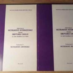 Principalele Instrumente Internationale Privind Drepturile Om - Institutul Roman Pentru Drepturile Omului, 385611 - Carte Drept penal