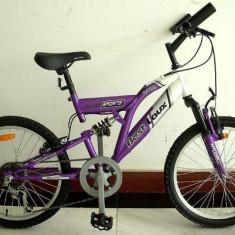 Bicicleta Mountain Bike 20