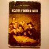 Dem. Theodorescu - Mic atlas de anatomia omului {Format mai mare}