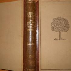 DIE BEIDEN RITTERHELM - RUDOLF HUCH - CARTE IN LIMBA GERMANA - Carte in germana