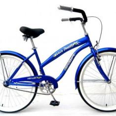 Bicicleta de oras 26