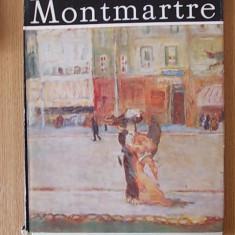 PICTORI DIN MONTMARTRE- ILEANA SOLDEA - Album Arta