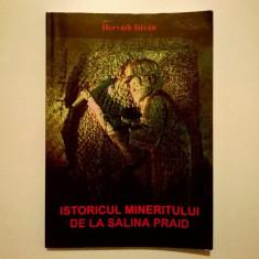 Horvath Istvan - Istoricul mineritului de la Salina Praid