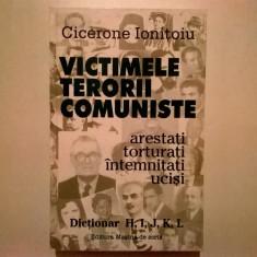 Cicerone Ionitoiu - Victimele terorii comuniste {Dictionar H-L} - Istorie