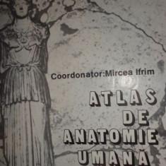 Mircea Ifrim - Atlas de anatomie umana Vol. 3