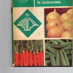 Pastrarea in stare proaspata a legumelor in gospodarie - Stefania Fugel - Carte gradinarit