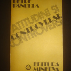PETRE PANDREA - ATITUDINI SI CONTROVERSE