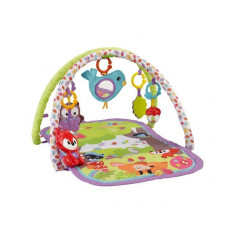 Centru activitati Woodland Friends 3-in-1 Musical Activity Gym Fisher Price - Tarc de joaca