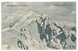 3648 - Sibiu, MOUNTAIN CARPATI, winter - old postcard, CENSOR - used - 1917, Circulata, Printata