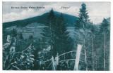 2917 - Bucovina, TIHUTA  PASS - old postcard, CENSOR - used - 1916, Circulata, Printata