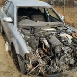 Wolksvagen, Volkswagen