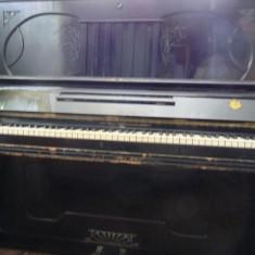 Pianina Altele Lauberger&Gloss