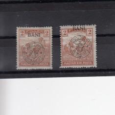ROMANIA 1919, EMISIUNEA CLUJ 2 BANI CU SUPRATIPAR DEPLASAT - Timbre Romania, Nestampilat
