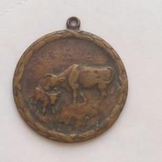 Medalie regalista agricultura, zootehnie