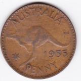 Australia PENNY 1955 fauna cangur, Australia si Oceania