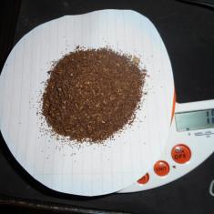 Seminte tutun 10 grame