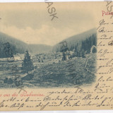 724 - Litho, Bucovina, PUTNA - old postcard - used - 1899