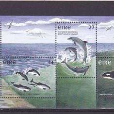 Fauna cetacee, foci, Irlanda. - Timbre straine, Nestampilat
