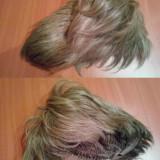 vand Peruca par natural saten blond tunsoare medie-scurta stare ca noua