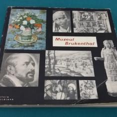 ALBUM MUZEUL BRUKENTAL*GALERIA DE ARTĂ PLASTICĂ/1964 - Album Muzee